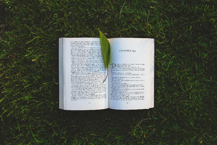 libri-iff